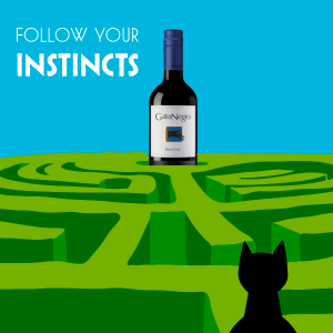 wine maze for kitty